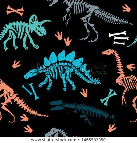 Dinosaur bones seamless pattern. Tyrannosaurus skeleton t-Rex. B Stock photo © popaukropa