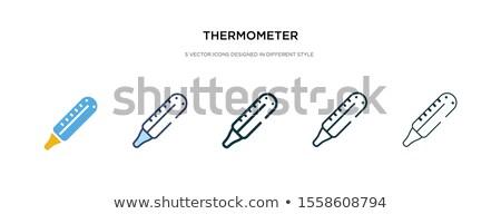 Celsius ikon farklı stil vektör simge Stok fotoğraf © sidmay