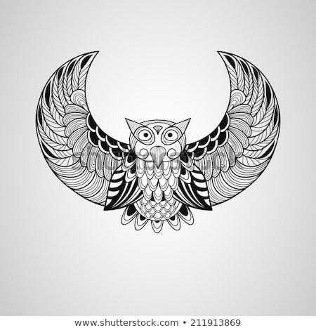 Mascota búho nativo ilustración cute Foto stock © lenm