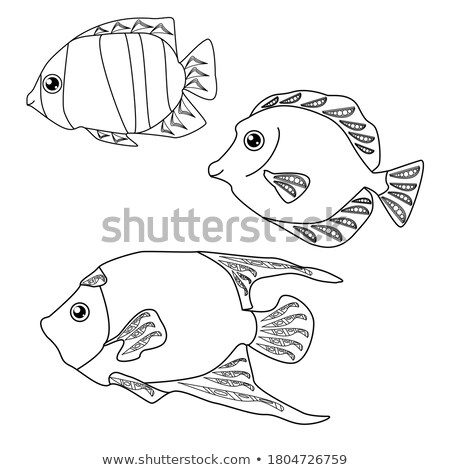 Set of Saltwater Inhabitant Vector Illustrations Stock photo © robuart