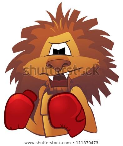 Rajz oroszlán boxeralsó illusztráció boxoló rövidnadrág Stock fotó © cthoman
