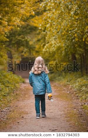 heureux · blond · fille · posant · automne · parc - photo stock © konradbak