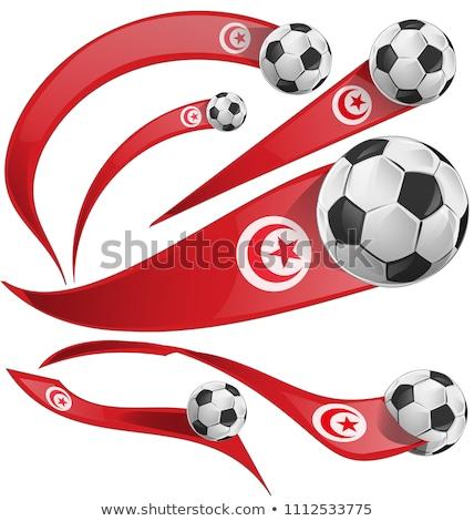 Тунис флаг набор изолированный белый искусства Сток-фото © doomko