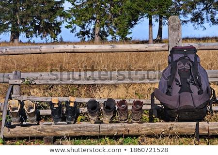 paar · rugzak · trekking · hout · jonge · man · vrouw - stockfoto © dolgachov