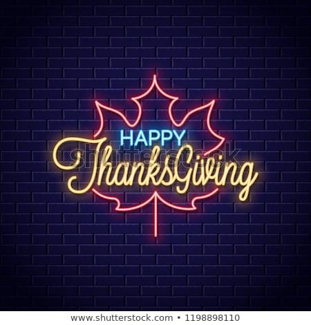 Happy Thanksgiving Day Neon Sign Stock photo © Anna_leni