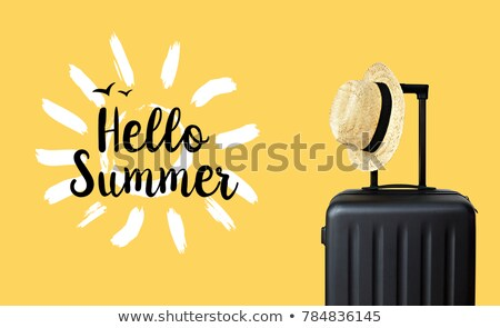 Olá verão mala ilustração praia menina Foto stock © bluering