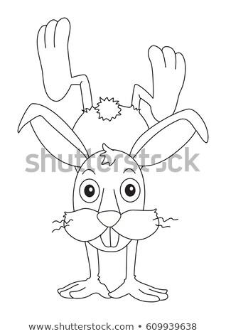 Doodles drafting animal for cute rabbit Stock photo © colematt