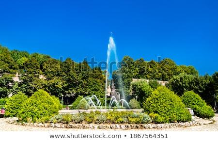 Fontana di San Prospero in Siena, Italy Stock photo © boggy