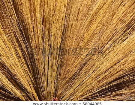Tightly bind hay at tip side of broom  Stock photo © inxti