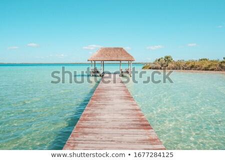 ビーチ · カリビアン · 晴れた - ストックフォト © lunamarina