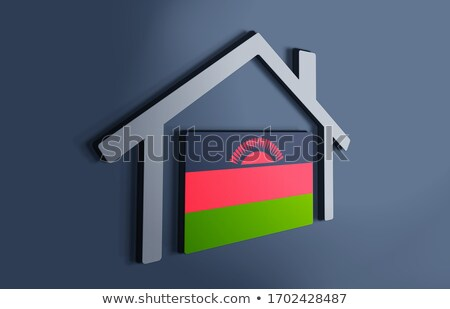 House with flag of malawi Stock photo © MikhailMishchenko