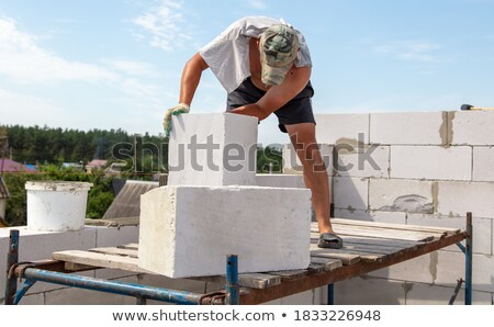 Builder bauen Backsteinmauer Partner konkrete Vektor Stock foto © netkov1