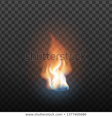 Realistic Burning Brush Fire Flame Element Vector Stock photo © pikepicture