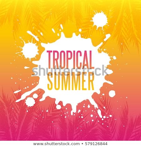 Tropischen Paradies Sommer Design Himmel Baum Stock foto © SArts
