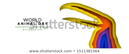 Animal day color papercut banner wild toucan bird Stock photo © cienpies