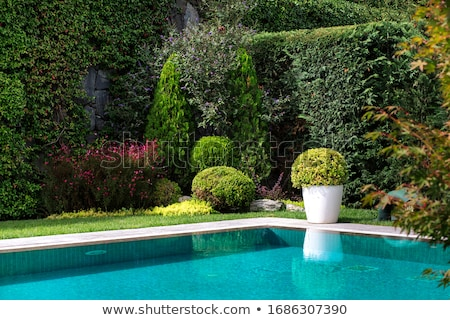 Garden with Swimming Pool and Flowers. Stock photo © ShustrikS