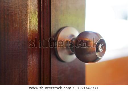 латунь двери обрабатывать древесины интерьер Сток-фото © morrbyte