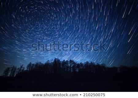 starry night - star trails on a night sky Stock photo © lightpoet