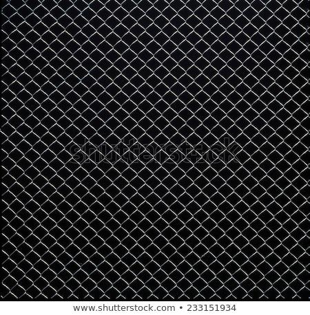 Drót háló közelkép nyár fű Stock fotó © HerrBullermann