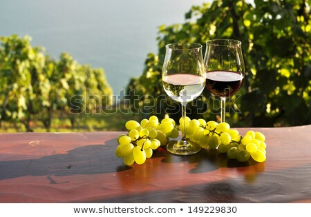couple with a glass of wine and basket of grapes stock photo © photography33