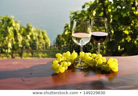 Casal vidro vinho cesta uvas mulher Foto stock © photography33
