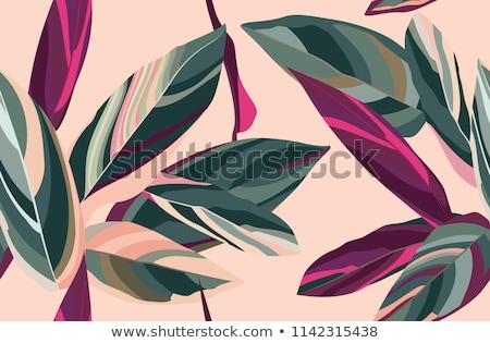Beautiful flower vector illustration texture Stock photo © Lemuana