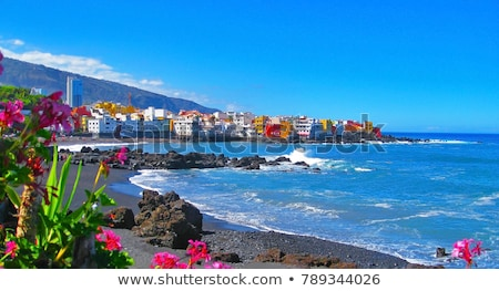 ocean coast at Puerto de la Cruz, Tenerife, Spain Stock photo © neirfy