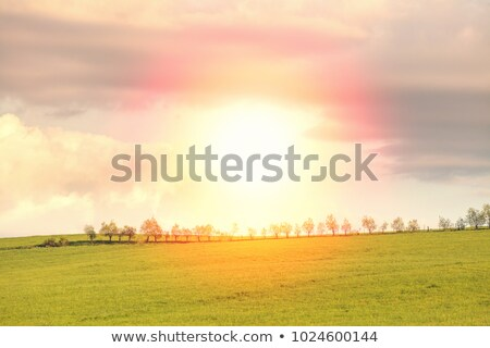 Foto stock: Caminho · verde · paisagem · natureza · campo · blue · sky