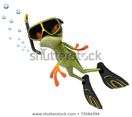 Búvárkodik béka vektor rajz aranyos el Stock fotó © fizzgig