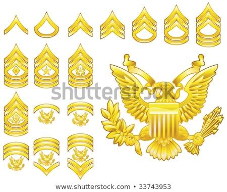 Amerikai őrmester jelvény rang kitűző izolált Stock fotó © speedfighter
