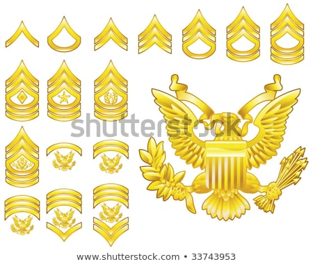 Amerikaanse sergeant insigne rangschikken badge geïsoleerd Stockfoto © speedfighter