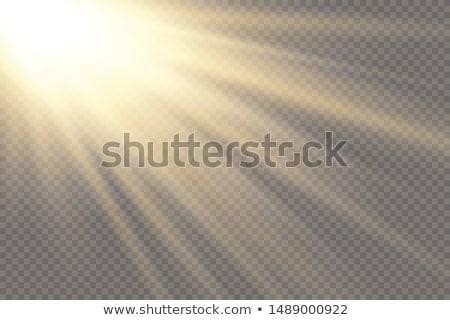 sun rays Stock photo © taden