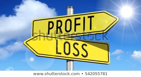 Profit or Loss. Concept of Choice. Stock photo © tashatuvango