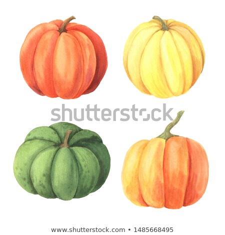 Feliz halloween cartão laranja brilhante colorido Foto stock © bharat