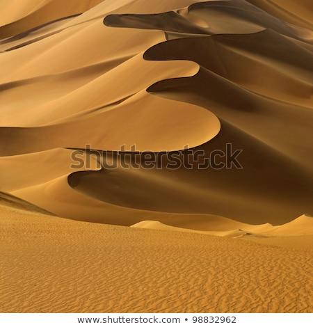 песчаная дюна зеленый лес природы фон песок Сток-фото © jkraft5