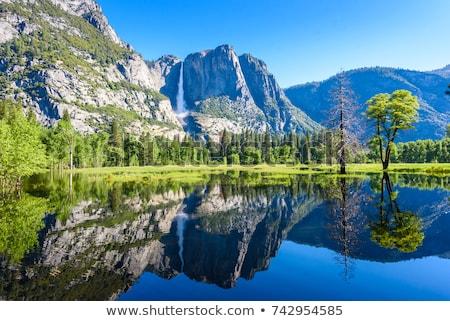 Yosemite rock rzeki lasu Zdjęcia stock © emattil