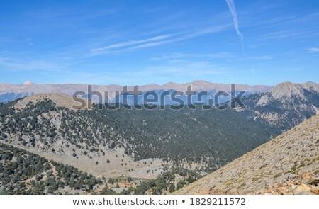 Turco montagna coperto vegetazione cielo nubi Foto d'archivio © cherezoff