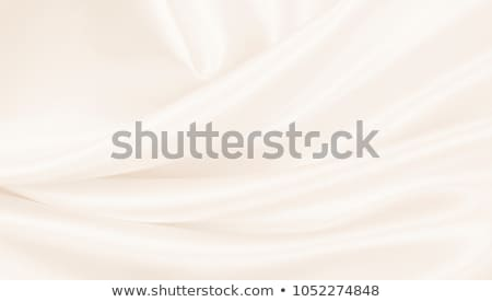 Lüks krem bağbozumu stil özel model Stok fotoğraf © liliwhite