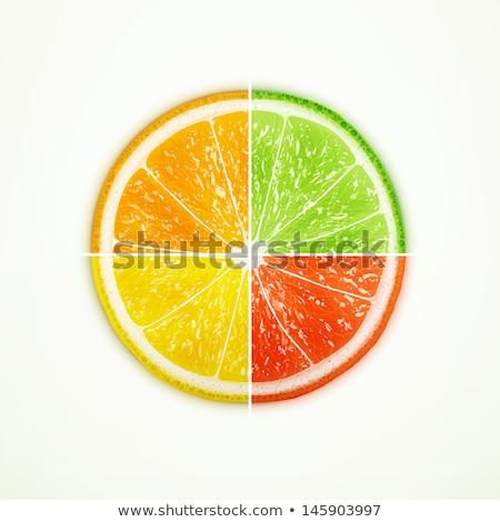 Cytrus owoce cztery ikona biały charakter Zdjęcia stock © Anna_leni