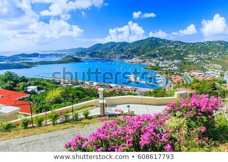 Watervliegtuig af Virgin Islands hemel stad vliegtuig Stockfoto © alexeys