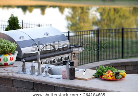Outdoor summer kitchen with barbecue and sink stock photo © ozgur