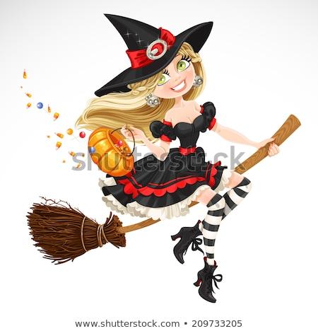 heks · kat · vliegen · bezemsteel · vriendelijk · halloween - stockfoto © orensila