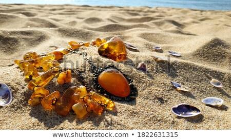 seashell and necklace on stone seacoast Stock photo © Paha_L