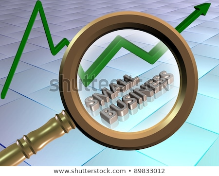 Small Business Concept through Magnifier. Stock photo © tashatuvango
