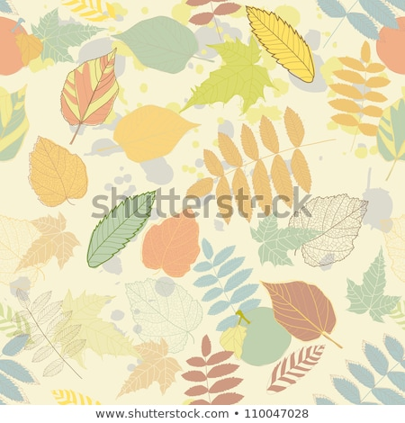 Autumn with colored leaves on bokeh effect. EPS 8 Stock photo © beholdereye