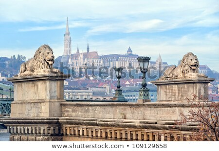 chain bridge lion matthias church budapest hungary stock photo © billperry