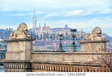 Chain Bridge Lion Matthias Church Budapest Hungary Stock photo © billperry