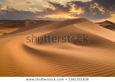 Sunset over the dunes, Morocco, Sahara Desert Stock photo © johnnychaos