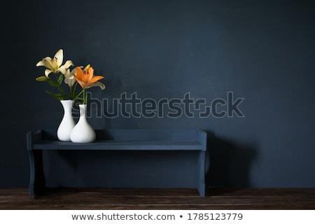 оранжевый Лилия цветок иллюстрация белый весны Сток-фото © bluering