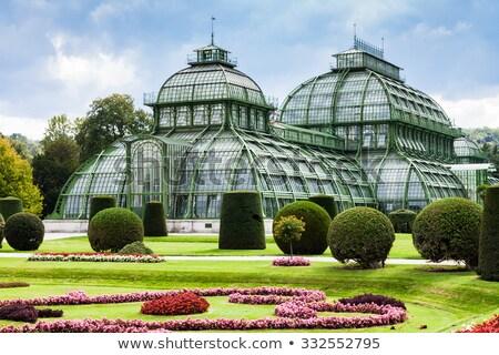 Foto stock: Estufa · jardim · Viena · Áustria